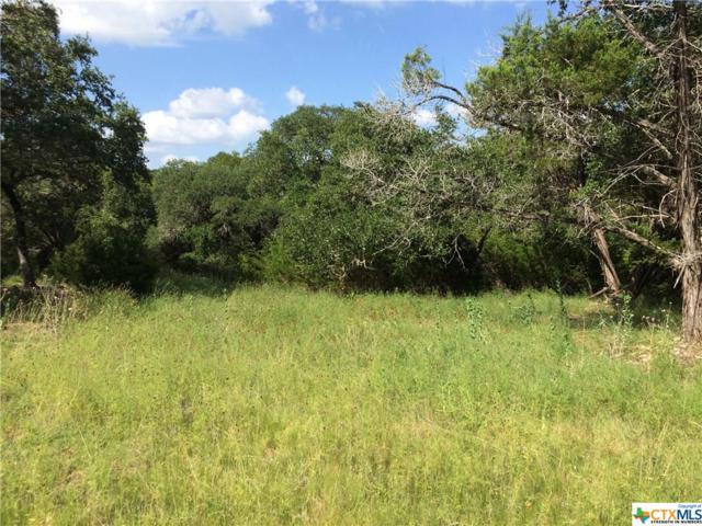 1226 Canyon Lake Drive, Canyon Lake, TX 78133 (MLS #384088) :: Vista Real Estate