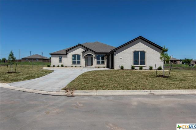 3372 Laurel Highlands Drive, Salado, TX 76571 (MLS #384115) :: Brautigan Realty