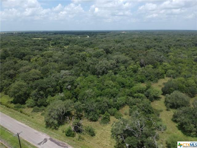 Tract D Old Hwy Rd, Inez, TX 77968 (MLS #384173) :: The Graham Team