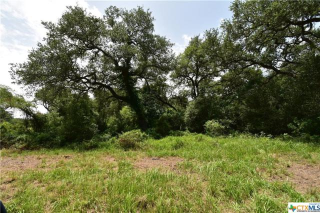 Tract G Old Hwy Rd, Inez, TX 77968 (MLS #384181) :: The Graham Team