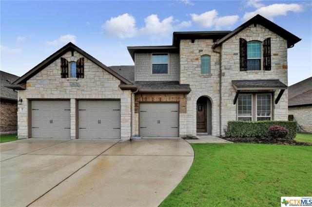 317 Norcia Loop, Liberty Hill, TX 78642 (#384228) :: 12 Points Group