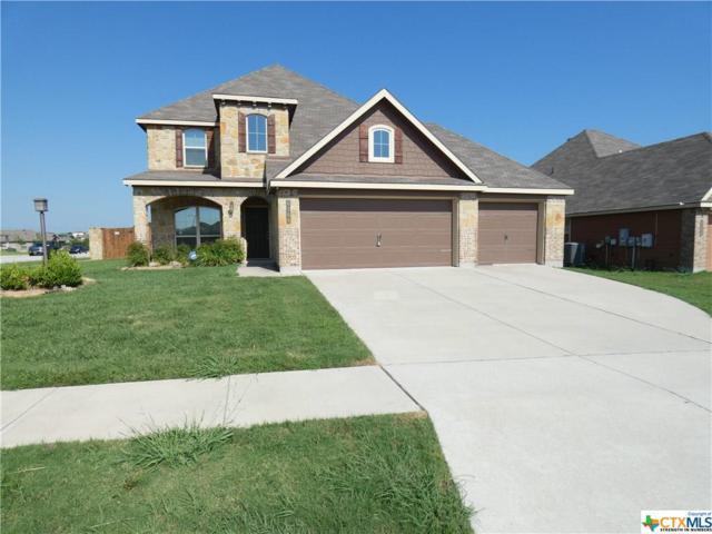 6306 Louise Lane, Killeen, TX 76549 (#384315) :: Realty Executives - Town & Country