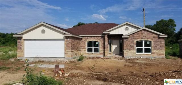 716 Damascus Drive, Belton, TX 76513 (MLS #384433) :: Brautigan Realty