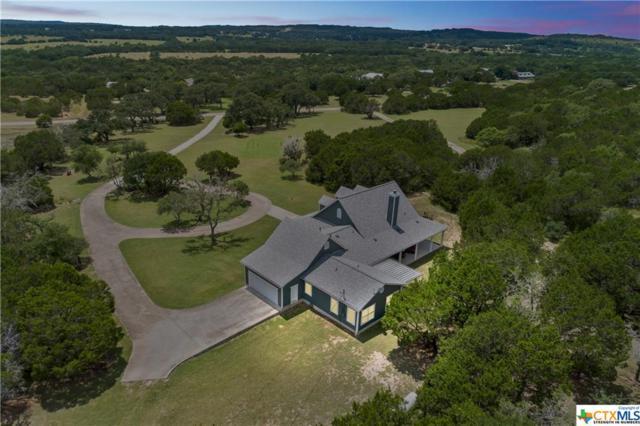 407 Blue Creek Drive, Dripping Springs, TX 78620 (MLS #384441) :: RE/MAX Land & Homes