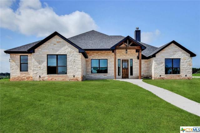 1236 Ambrose Drive, Salado, TX 76571 (MLS #384476) :: The Real Estate Home Team