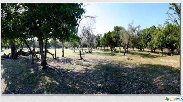 2455 Fm 1715, Lampasas, TX 76550 (MLS #384483) :: The Real Estate Home Team
