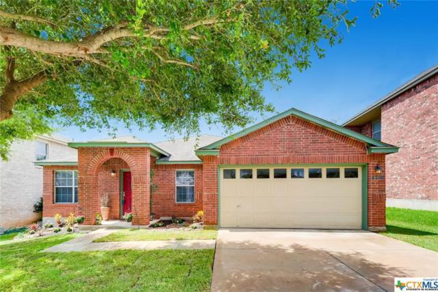 4736 Bent Elm, San Antonio, TX 78259 (MLS #384491) :: Magnolia Realty