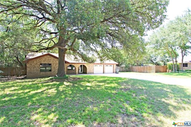 11103 Salado Springs Circle, Salado, TX 76571 (MLS #384497) :: Brautigan Realty