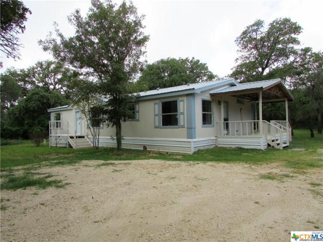 144 Dinks Lane, Seguin, TX 78155 (MLS #384515) :: Berkshire Hathaway HomeServices Don Johnson, REALTORS®