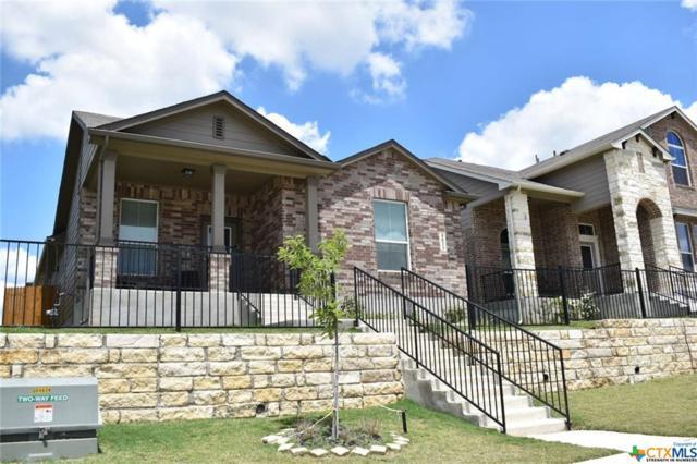 4033 Skylark Lane, San Marcos, TX 78666 (MLS #384541) :: The Graham Team