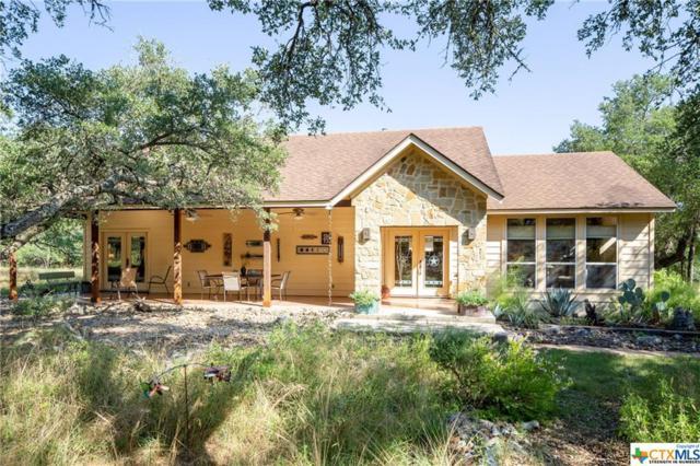 700 Cascade Trail, San Marcos, TX 78666 (MLS #384545) :: The Graham Team