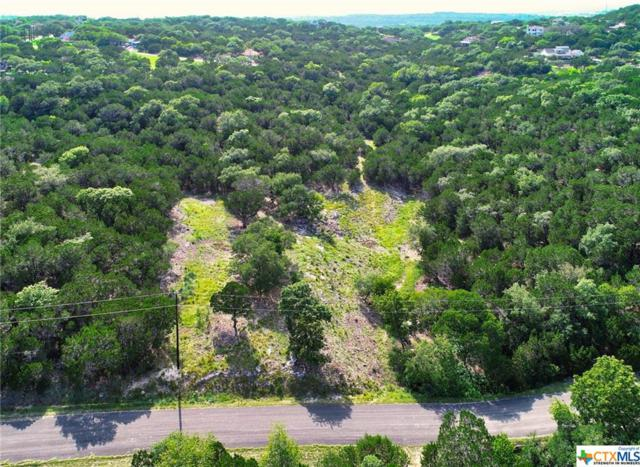 1240 Rose Lane, Canyon Lake, TX 78133 (MLS #384620) :: Berkshire Hathaway HomeServices Don Johnson, REALTORS®