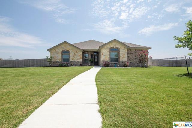3105 Saint Matthew Street, Salado, TX 76571 (MLS #384625) :: The Real Estate Home Team