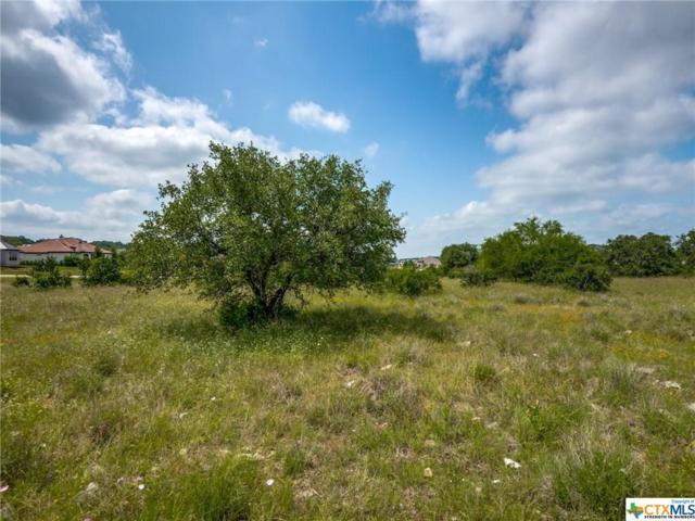 1991 Appellation, New Braunfels, TX 78132 (MLS #384636) :: Vista Real Estate