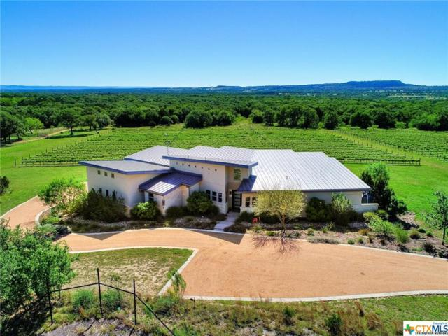 1758 Lincoln Smith Road, Round Mountain, TX 78663 (MLS #384645) :: The i35 Group