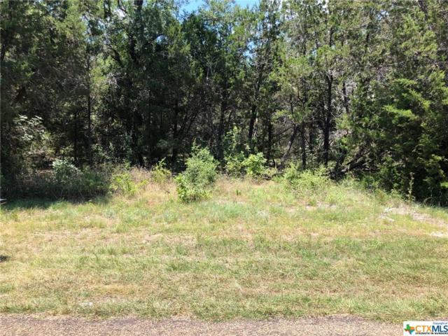TBD (LOT 1) Owl Creek Road, Belton, TX 76513 (MLS #384653) :: Brautigan Realty