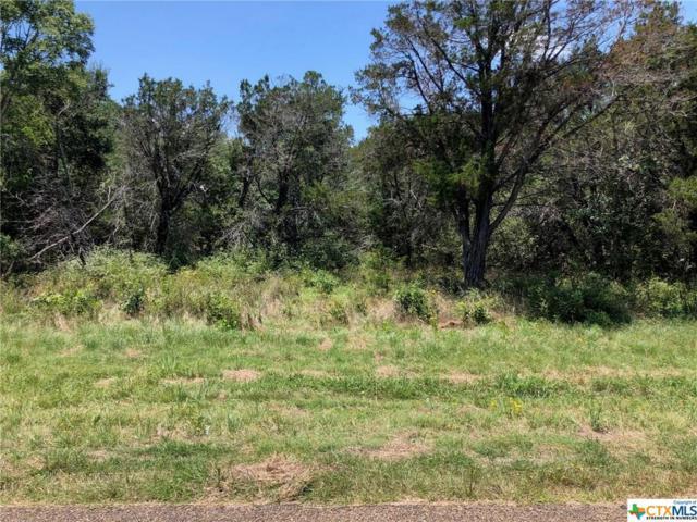 TBD (LOT 2) Owl Creek Road, Belton, TX 76513 (MLS #384659) :: Brautigan Realty