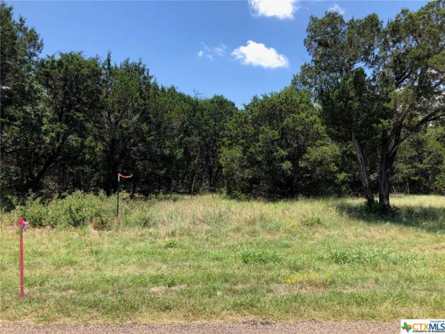 TBD (LOT 3) Owl Creek Road, Belton, TX 76513 (MLS #384661) :: Brautigan Realty