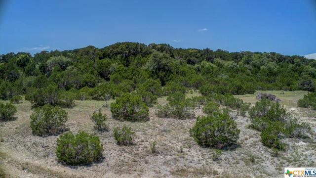 1360 Primrose Path, Canyon Lake, TX 78133 (MLS #384686) :: Vista Real Estate