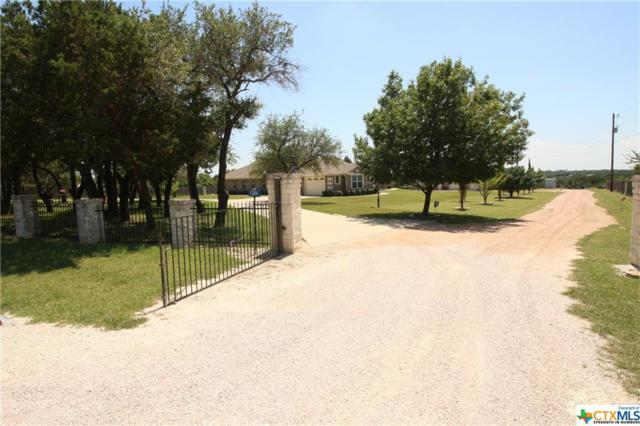 1284 County Road 4765, Kempner, TX 76539 (MLS #384737) :: The Real Estate Home Team