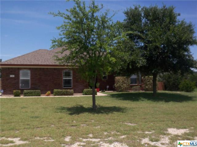 291 County Road 4709, Kempner, TX 76539 (MLS #384742) :: The Real Estate Home Team