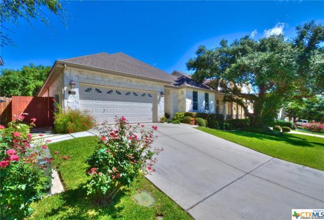 3228 Espada, New Braunfels, TX 78132 (MLS #384757) :: Magnolia Realty