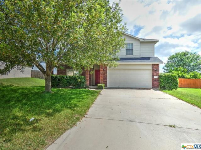 3059 Rain Dance Loop, Harker Heights, TX 76548 (#384818) :: Realty Executives - Town & Country