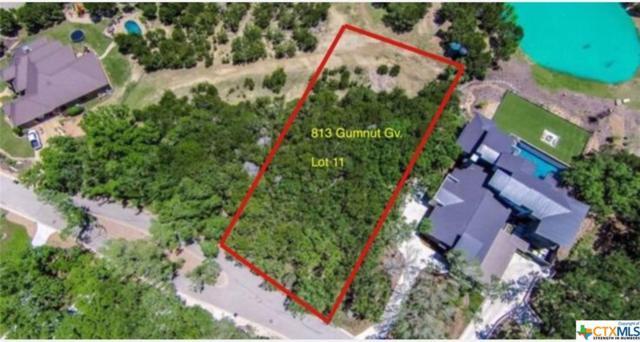 813 Gumnut Grove, New Braunfels, TX 78132 (MLS #384830) :: Magnolia Realty