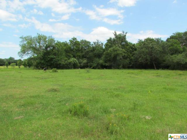 0 County Road 1H, Hallettsville, TX 78964 (MLS #384853) :: The Zaplac Group