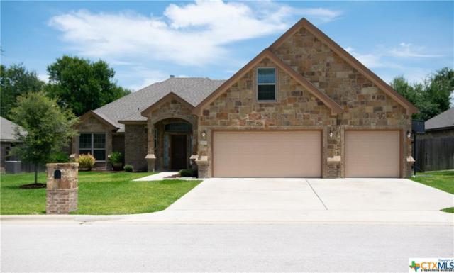 3204 Purple Sage Drive, Belton, TX 76513 (MLS #384862) :: Brautigan Realty