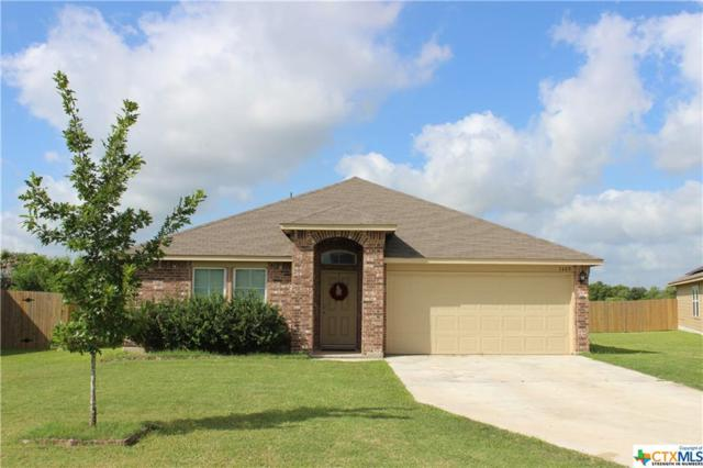 1409 Birmingham Drive, Seguin, TX 78155 (MLS #384875) :: Berkshire Hathaway HomeServices Don Johnson, REALTORS®