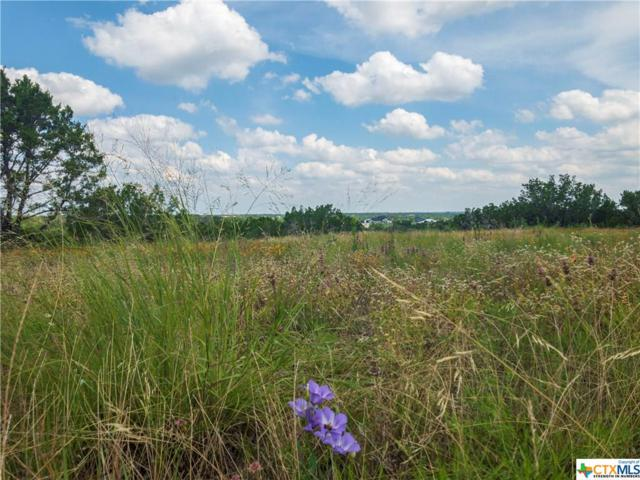 Lot 25 Rain Lily Court, Burnet, TX 78611 (#384887) :: Realty Executives - Town & Country