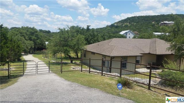 1830 Island View, Canyon Lake, TX 78133 (MLS #384892) :: The i35 Group