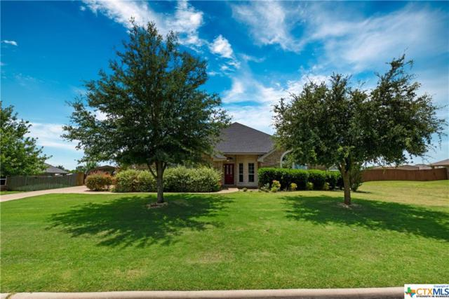 282 Hamer Drive, Salado, TX 76571 (MLS #384902) :: Brautigan Realty