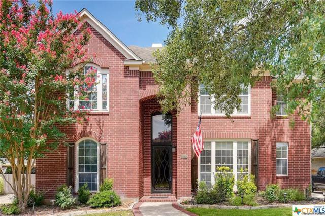 18723 Surreywood, San Antonio, TX 78258 (MLS #384942) :: Magnolia Realty