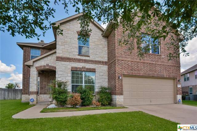10509 Orion Drive, Temple, TX 76502 (MLS #384956) :: Brautigan Realty