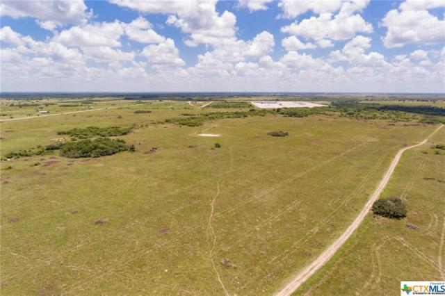 000 Willow Creek Road, Victoria, TX 77904 (MLS #384957) :: The Zaplac Group