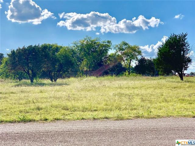 104 Woodhollow Road, Gatesville, TX 76528 (MLS #384959) :: The Real Estate Home Team