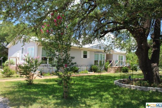 1007 Cr 3300, Kempner, TX 76539 (MLS #384968) :: The Zaplac Group
