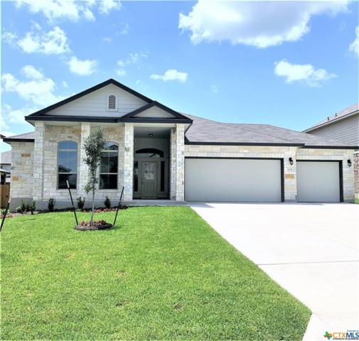1130 Juneberry Park Drive, Temple, TX 76502 (MLS #385010) :: Magnolia Realty