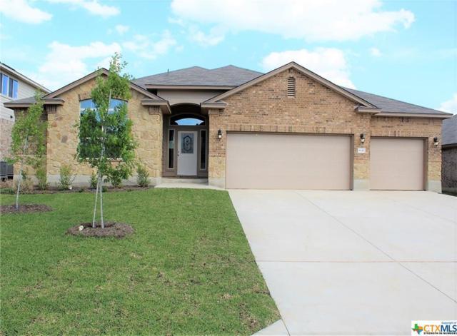 1123 Juneberry Park Drive, Temple, TX 76502 (MLS #385027) :: Magnolia Realty