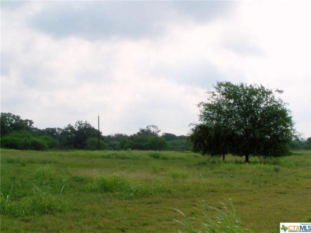 1551 Friar Rd, Cuero, TX 77954 (MLS #385047) :: Kopecky Group at RE/MAX Land & Homes