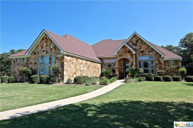 181 Mikey Lane, Temple, TX 76502 (MLS #385078) :: The i35 Group