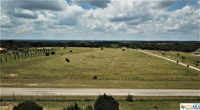 4221 County Road 3270, Kempner, TX 76539 (MLS #385097) :: The Real Estate Home Team