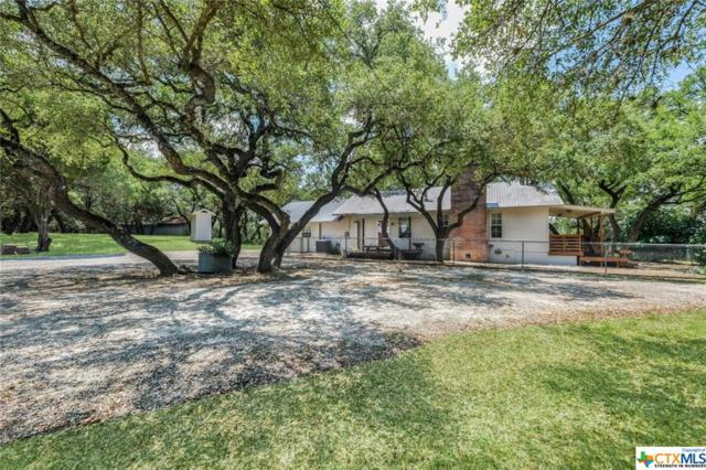281,221 Jacobs Creek Park Rd Road, Canyon Lake, TX 78133 (MLS #385099) :: Berkshire Hathaway HomeServices Don Johnson, REALTORS®