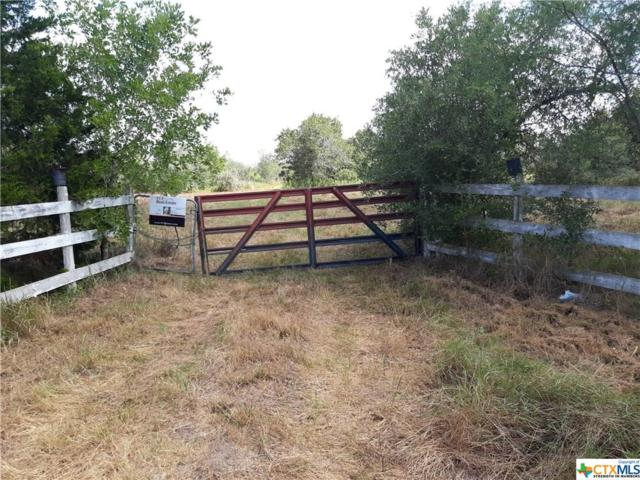 525 Shelly Road, Goliad, TX 77963 (MLS #385102) :: The i35 Group
