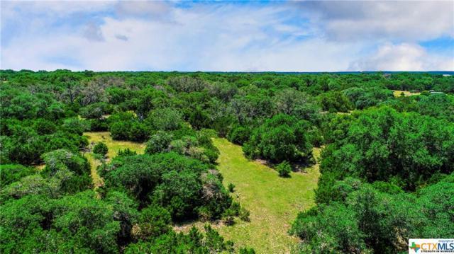 TBD 30 Acres Zenner-Ahrens Road, Kerrville, TX 78028 (MLS #385126) :: Magnolia Realty