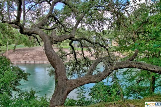 244 Deer Slayer Drive, Seguin, TX 78155 (MLS #385142) :: RE/MAX Land & Homes