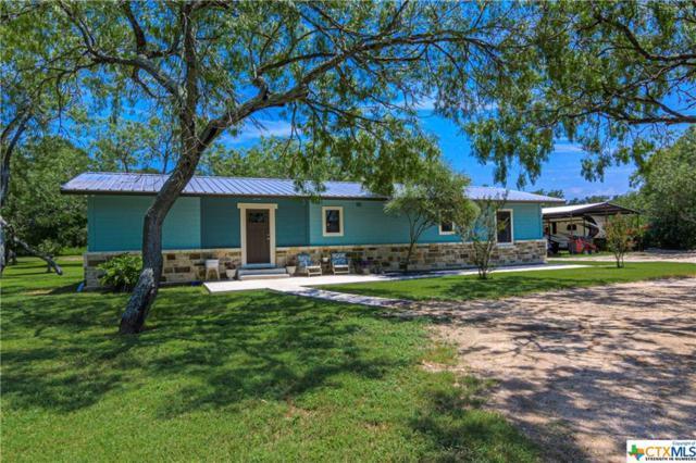171 Cottonwood Lane, Seguin, TX 78155 (MLS #385182) :: Berkshire Hathaway HomeServices Don Johnson, REALTORS®