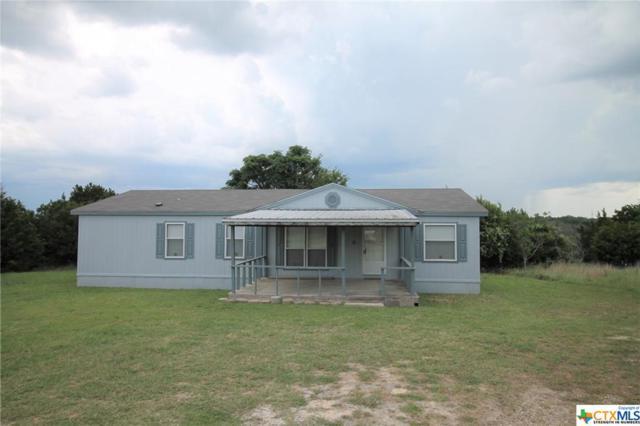 297 Antelope Trail, Killeen, TX 76542 (MLS #385218) :: Kopecky Group at RE/MAX Land & Homes